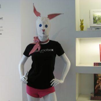 Teoksen nimi: Jänis – The Hare (valokuvasarja)