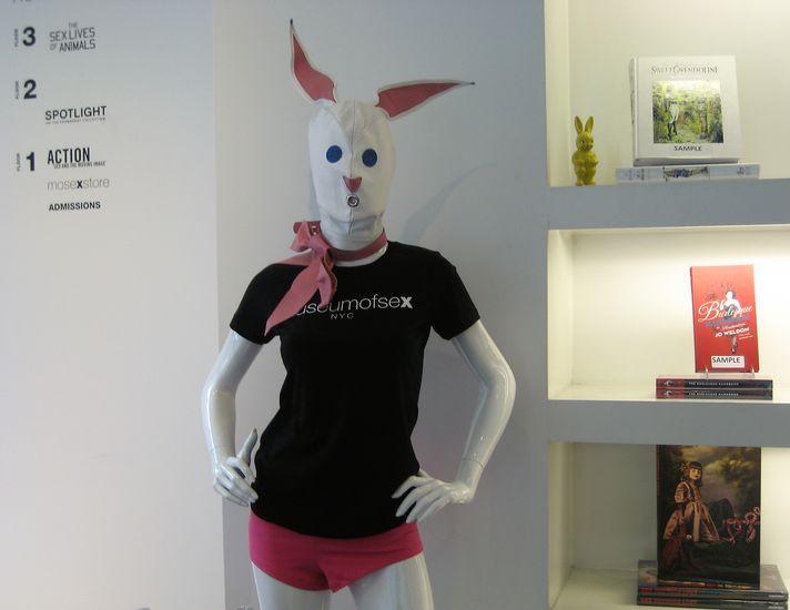 Jänis – The Hare (valokuvasarja)