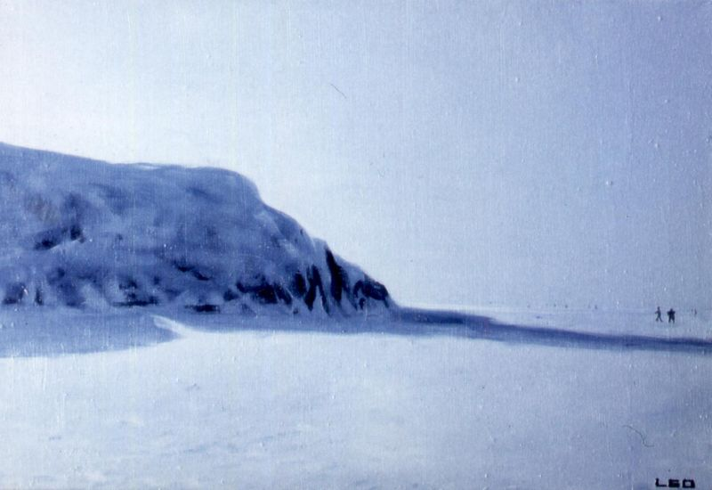 Harakan saari 2004