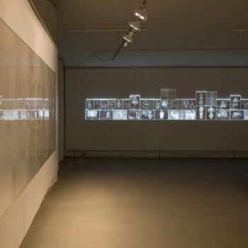 Teoksen nimi: Feng Shui, 2010