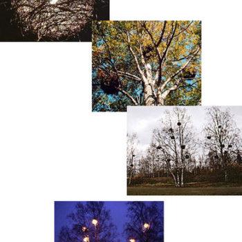 Teoksen nimi: Pesäpuut