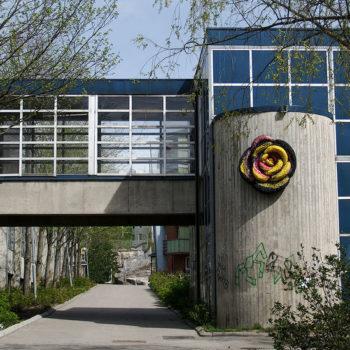 Teoksen nimi: Lähiöruusunen / Suburban Rose, 2011, virkattu kierrätysmuovi