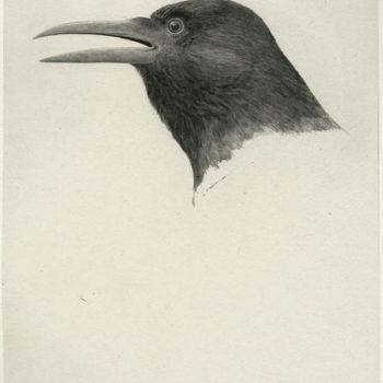 Teoksen nimi: Musta lintu, 2010