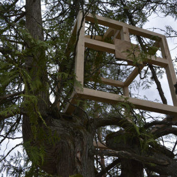 Teoksen nimi: Teoksesta Pesänrakentajat | Nest Builders (detail)