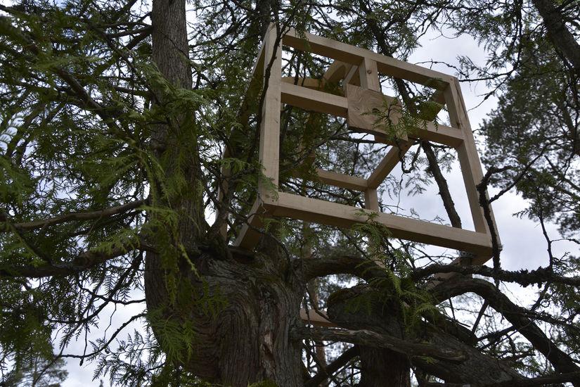 Teoksesta Pesänrakentajat | Nest Builders (detail)