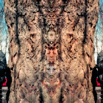 Teoksen nimi: Urban Shaman(Big tree).2011