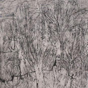 Teoksen nimi: Lehdettömät puut/Trees without leaves