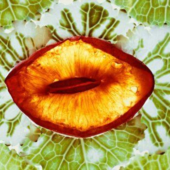 Teoksen nimi: MACEDOINE DE FRUITS – hedelmäsalaatti