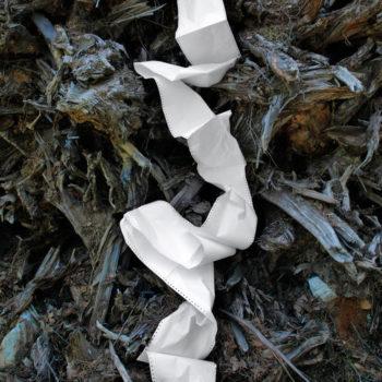 Teoksen nimi: Nimetön (2009) sarjasta Forest Stories