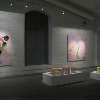 Teoksen nimi: Pink Planktons Plastic Bits in cold spotlights, Salo Art Museum 2013