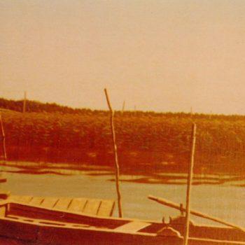 Teoksen nimi: Kaislikkorantaa Porvoossa 1980