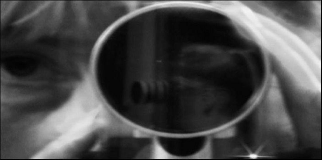 Re-Mirror Me -videoteos /video work 2010