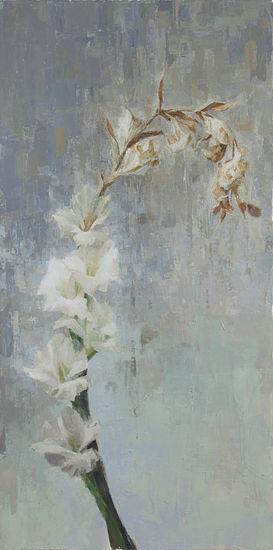 Gladiolus Gravitatis
