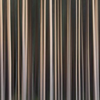 Teoksen nimi: Forest #4, 2011