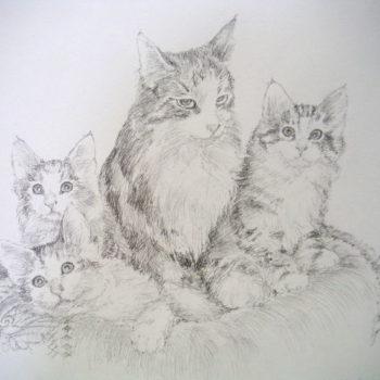 Teoksen nimi: Siiri kissa pentuineen