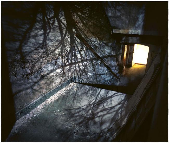 Puhuva talo 7, 2006