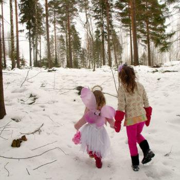 """Teoksen nimi: """"Keijujen metsä"""" 2009 Helsinki, yhteisötaide"""