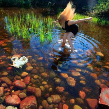 Teoksen nimi: Swan Lake