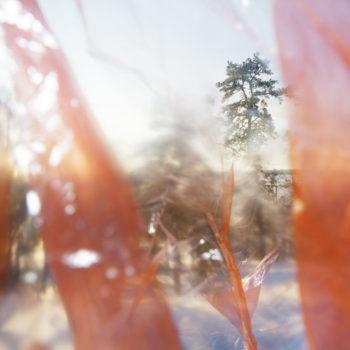 Teoksen nimi: Kiinalainen talvi 7 / Chinese winter 7