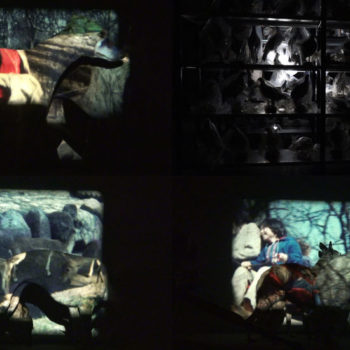 Teoksen nimi: ZOO – forced migration, 2014, video