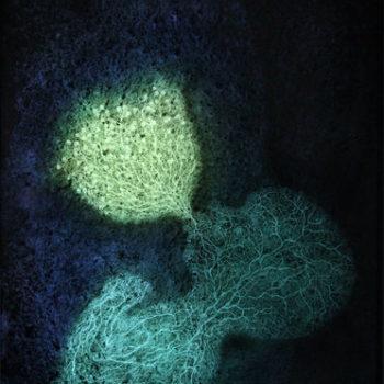 Teoksen nimi: Lanka (Galaktotrofusa) / The Thread (Galaktotrofusa)