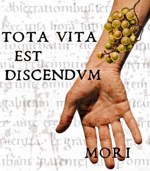 Tota vita est discendum mori- koko elämä on opettelemista  kuolemaan