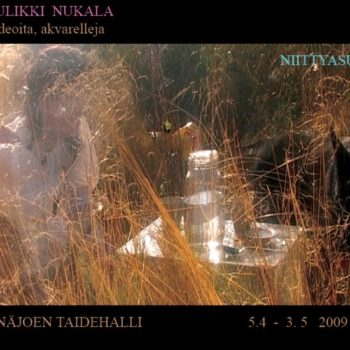 "Name of the work: ""Niittyasunto"" videoteos 2009"