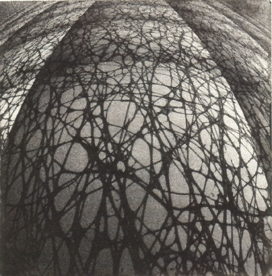 """""""Connecting Net"""", 2007"""