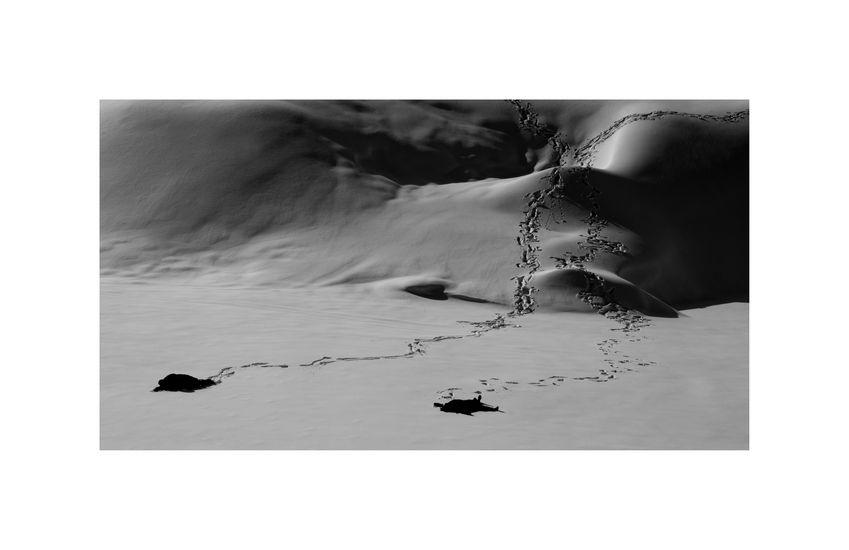 Ice – Stay # 4 METSO JUHA Ice-Stay # 4, 2014 , 80 x 120 cm  Sarjasta Jää-jää / Ice-Stay / Eis-Bleib