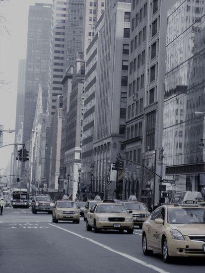 N.Y. 5TH AVE