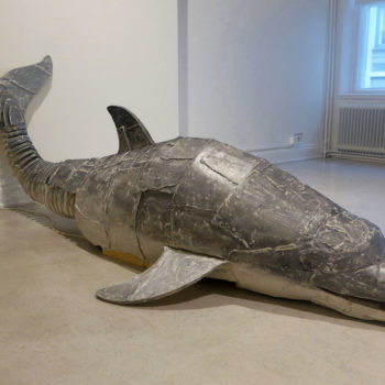 Teoksen nimi: Viimeinen delfiini