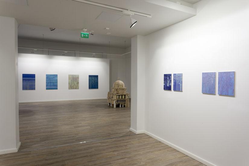 Ripustuskuva, Galleria Maaret Finnberg, Turku 2011