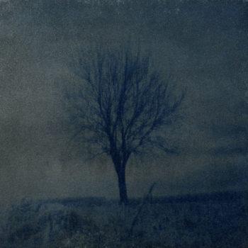 Teoksen nimi: Kauneus, masentuneen toinen maailma (Julia Kristeva)