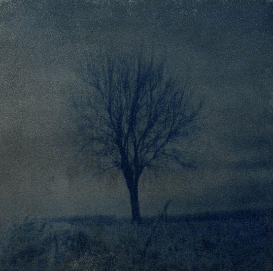 Kauneus, masentuneen toinen maailma (Julia Kristeva)
