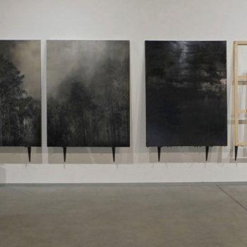 Teoksen nimi: Landscape, 2012-2013