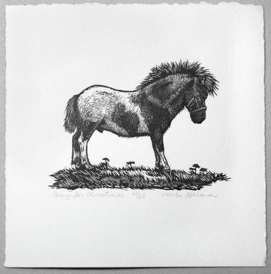 Pony for Christmas