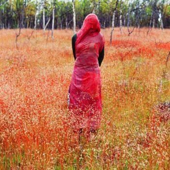 Teoksen nimi: Hänellä on kieli saippuasta; Transparent-sarjaa, osa I Solitude ©2007