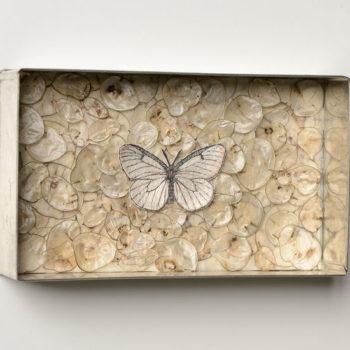 Teoksen nimi: Pihlajaperhonen, 2012