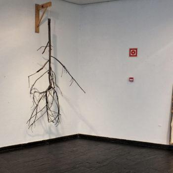 Teoksen nimi: oikealla; I Was Here, 2013, vasemmalla; View, 2013