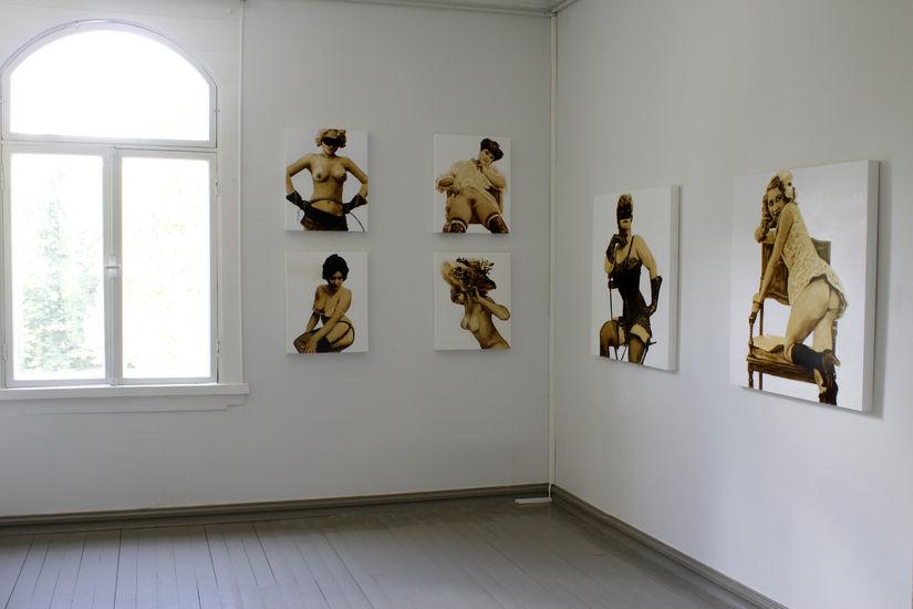 yleiskuva, Pyhäniemen kartano 2011-näyttely