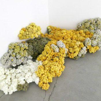 Teoksen nimi: Kivikorallit (Corales pétreos)