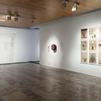Teoksen nimi: Näyttelykuva retrospektiivi 2016 Rovaniemen taidemuseo