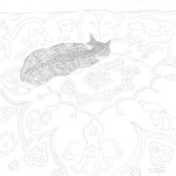 Teoksen nimi: Kissa kuviopeitolla,   lyijykynäpiirustus      2006