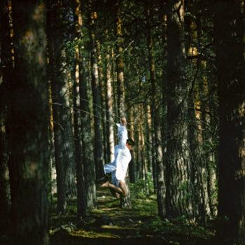 Teoksen nimi: Metsä