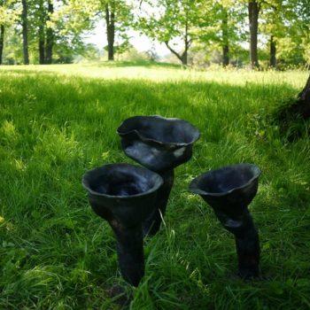 Teoksen nimi: Torkkuvat Mustatorvisienet, ääni-installaatio, 2010 – 2011