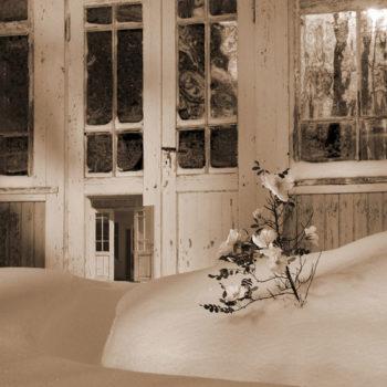 Teoksen nimi: Lumipeitteen alla