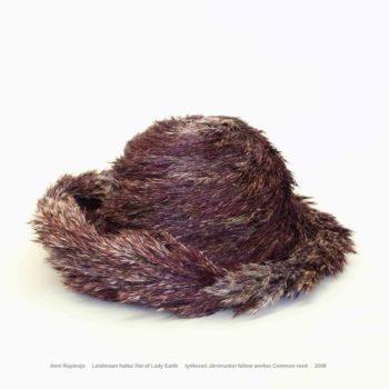 Name of the work: Leidimaan hattu