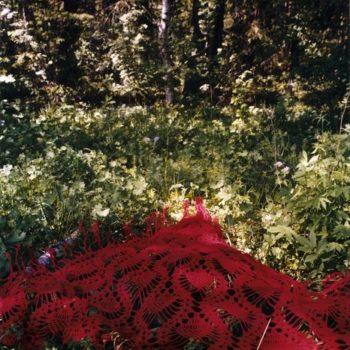 Teoksen nimi: Punainen saali,Lottola,Jääski/Lesogorski 1999