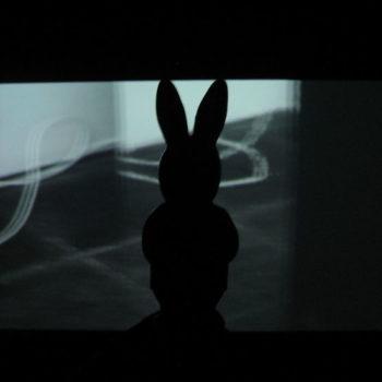 Teoksen nimi: Jänis – The Hare (valokuvasarja) 2002-2017; osa sarjasta