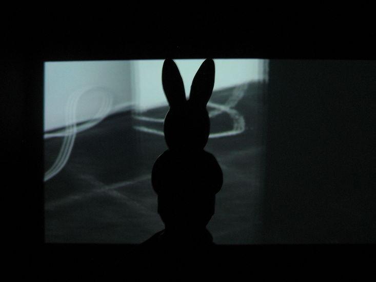 Jänis – The Hare (valokuvasarja) 2002-2017; osa sarjasta